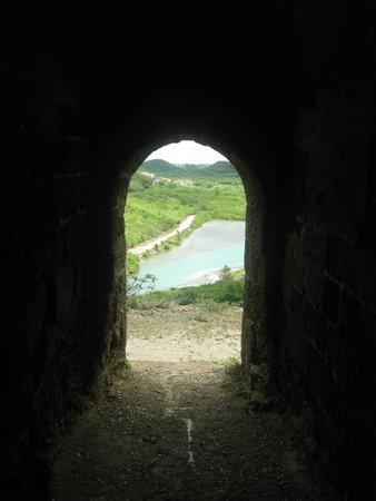 Fort Barrington : Inland