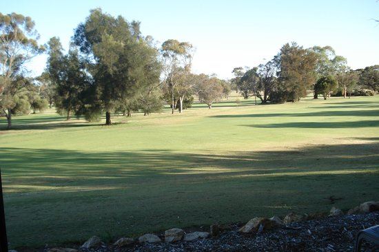 Barmera Country Club: View from our room