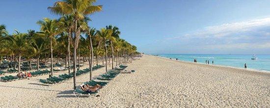 Hotel Riu Tequila Mexico Riviera Maya Playa Del Carmen All Inclusive Resort Reviews Photos Price Comparison Tripadvisor