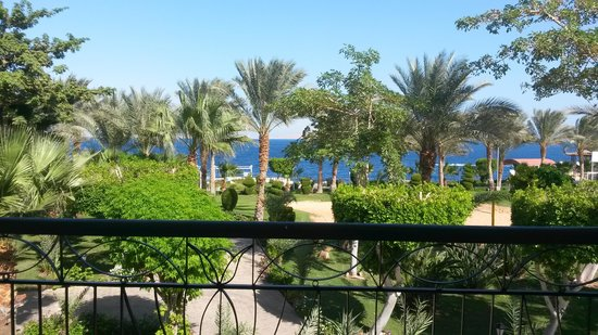 Sultan Gardens Resort: вид из номера