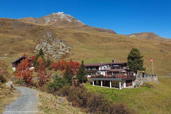 Alpenblick Restaurant