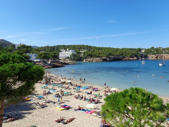 Grupotel Oasis: great beach