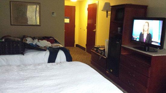 Hampton Inn Ithaca: room2