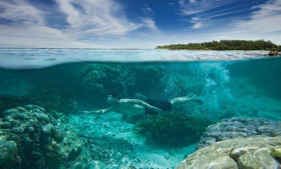 Four Seasons Resort Seychelles at Desroches Island: Snorkel