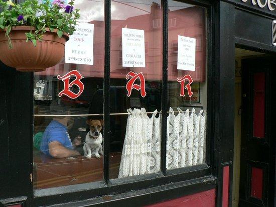The Olde Fiddle Pub
