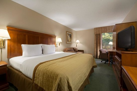 Baymont Inn & Suites Greenville: Kings with comfortable Sleeper Sofas