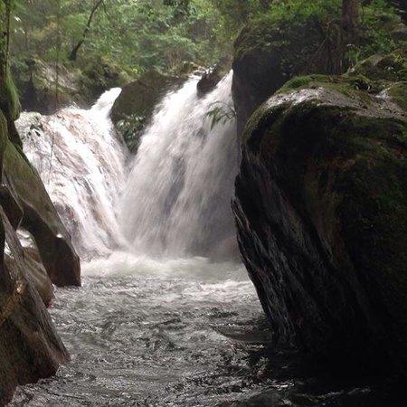 Cascada Picture Of Jungle Joe Minca Adventures Tripadvisor