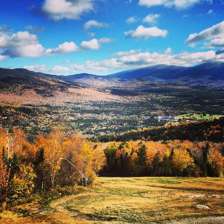 Bretton Woods Canopy Tour: Starting from above!