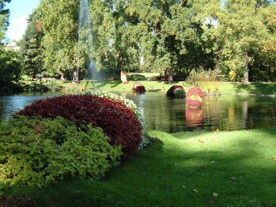 L 39 oiseau picture of jardin des plantes nantes tripadvisor for Jardin des plantes nantes