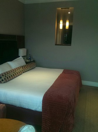 The Brehon: Room 119