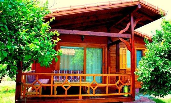 Baraka House: room
