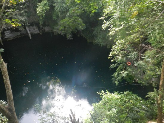Cenote Yokdzonot : View from above