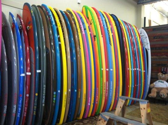 YOLO Board San Diego