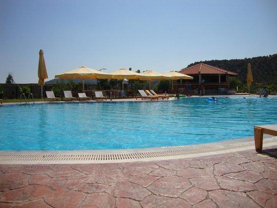 Aktaion Resort : πισινα