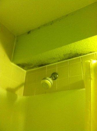 Days Inn Henrietta/Rochester Area: Black mold in the bathroom