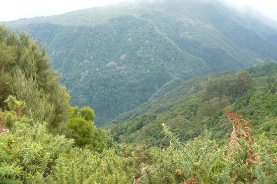 Madeira Happy Tours - Day Excursions : One of the views from the top