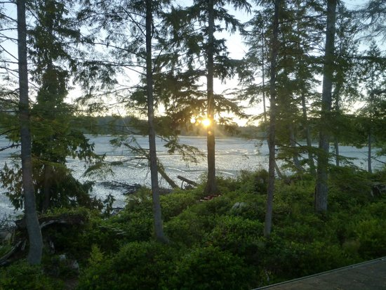 Black Bear Guesthouse: Sunrise from Osprey Room