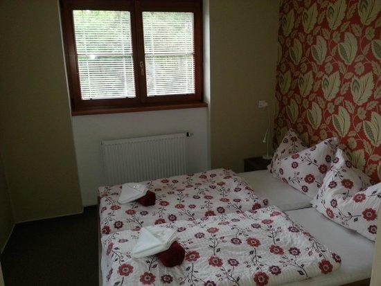Ski Hotel Stoh: Room