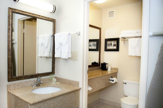 Holiday Inn Spearfish - Northern Black Hills : Bathroom