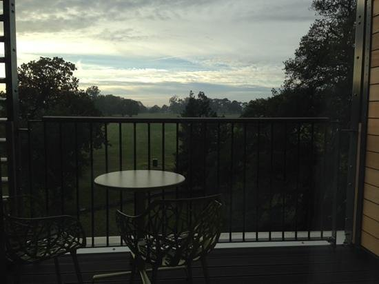 Wivenhoe House: early morning view