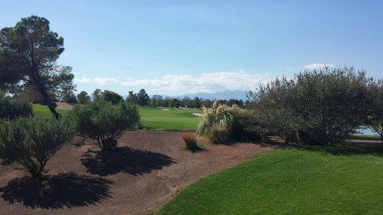 Desert Pines Golf Club : Strip view golf