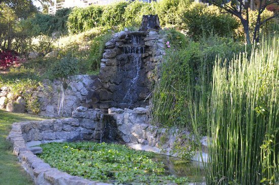 Ojai Retreat: Calming Waterfall and Pond
