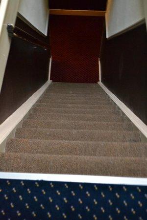 Hotel Washington: crazy stairs