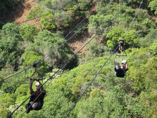 Piiholo Ranch Zipline : Side by side zipping