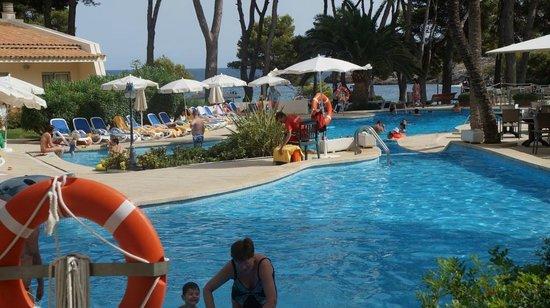IBEROSTAR Pinos Park: Poolbereich
