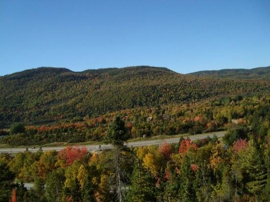 Marble Zip Tours : beautiful fall colours from one of the lines