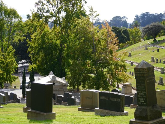 Mountain View Cemetery: One view of the grounds