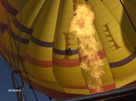 Apex Balloons: our beautiul balloon