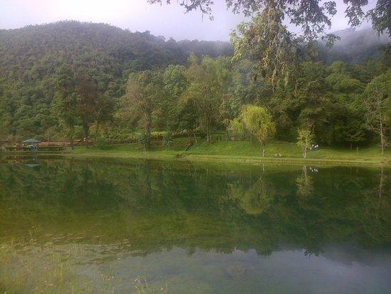 Laguna de los cedros