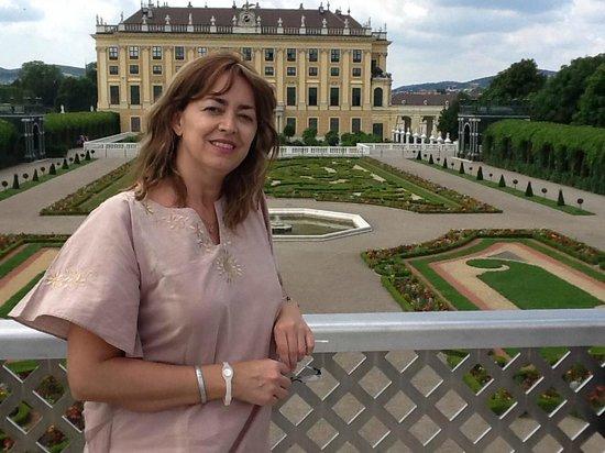 Hotel Riede: En el Palacio de Schonbrunn