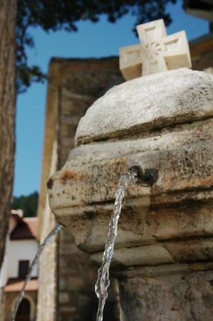 Visoki Decani Monastery: Fontana