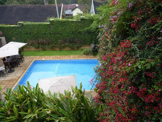 The African Tulip: Pool area from our room