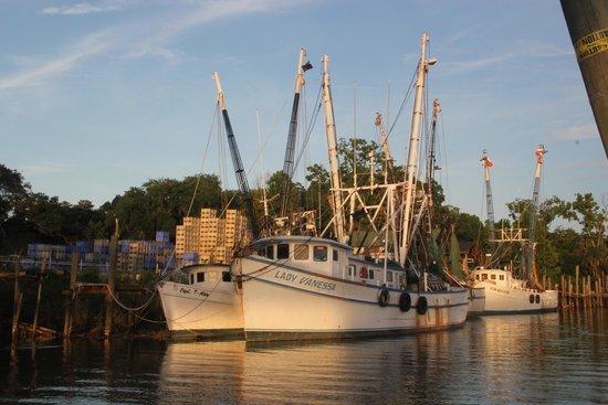 Darien Waterfront Inn: Nearby shrimp boats