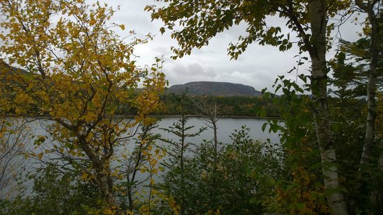 Kilmory Resort: View from #11