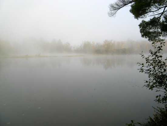 Pine Cliff Resort: Fog over the water