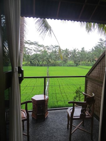 Junjungan Ubud Hotel and Spa : View from Balcony