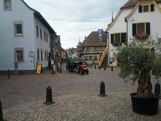 Deidesheimer Hof: ホテル正面から村の景色