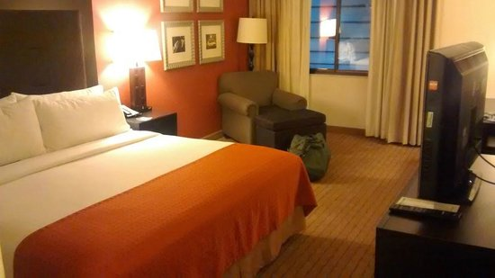 Holiday Inn Itasca (Woodfield Area): Room