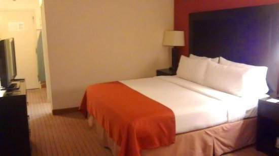 Holiday Inn Itasca (Woodfield Area): ok bed