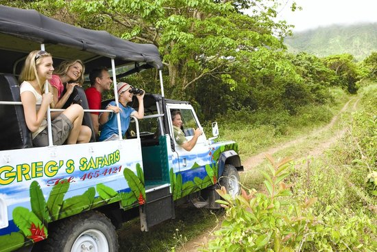Greg's Safaris: Greg Safaris Tour Land Rover