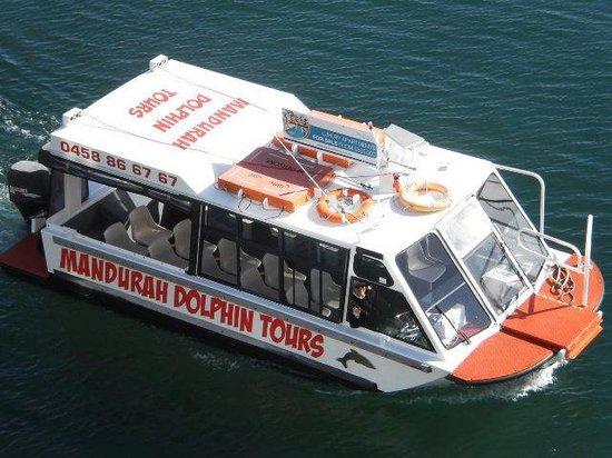 Mandurah Dolphin Tours