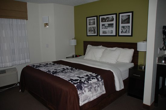 Sleep Inn : King bedroom