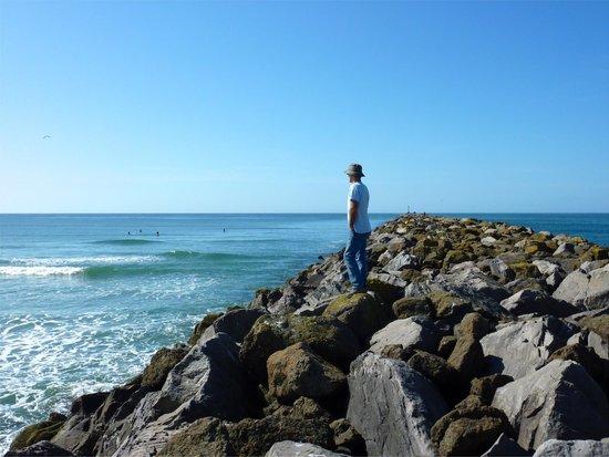 South Beach State Park Jetty