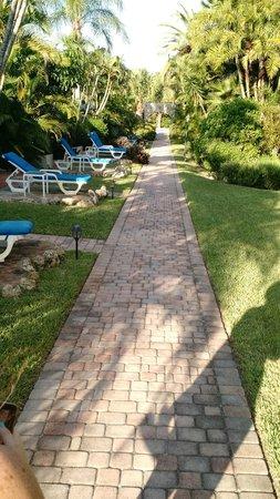 Sandpiper Inn: Main walkway