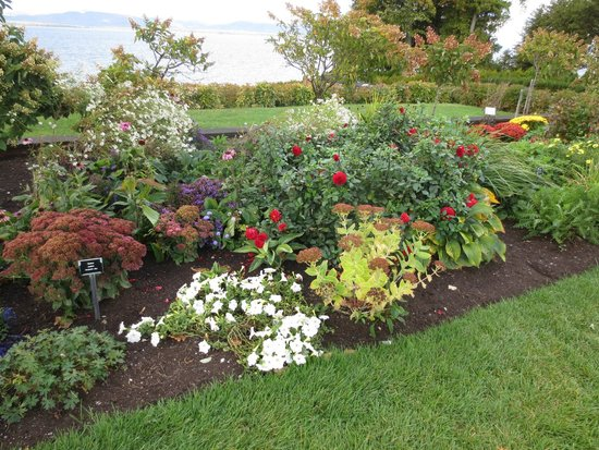 The Inn at Shelburne Farms Restaurant : Gardens in bloom in October