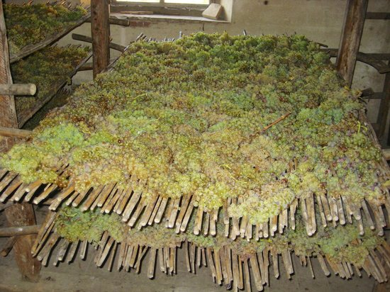 Montespertoli, Italia: More grapes drying